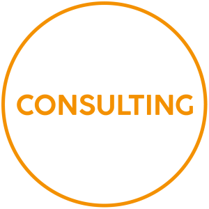 immagine-consulting